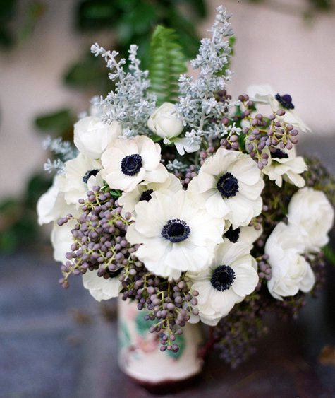 Beautiful Flowers Anemones