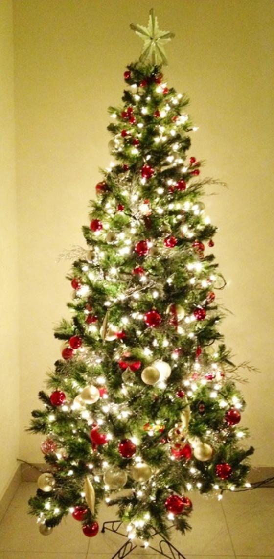 chrismas tree 2013