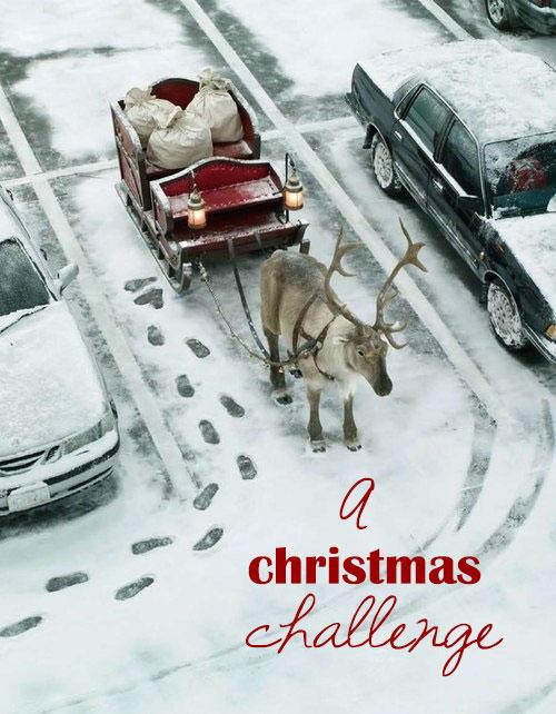 reindeer-xmas