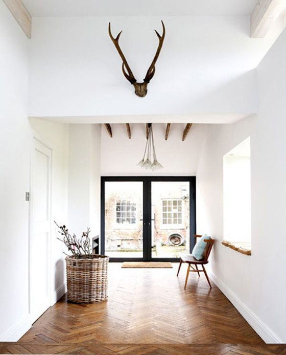 antlers-on-wall