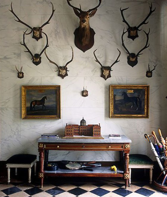 antlers-on-wall2